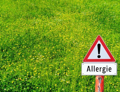 Welche Pflanzen besitzen allergene Pollen?