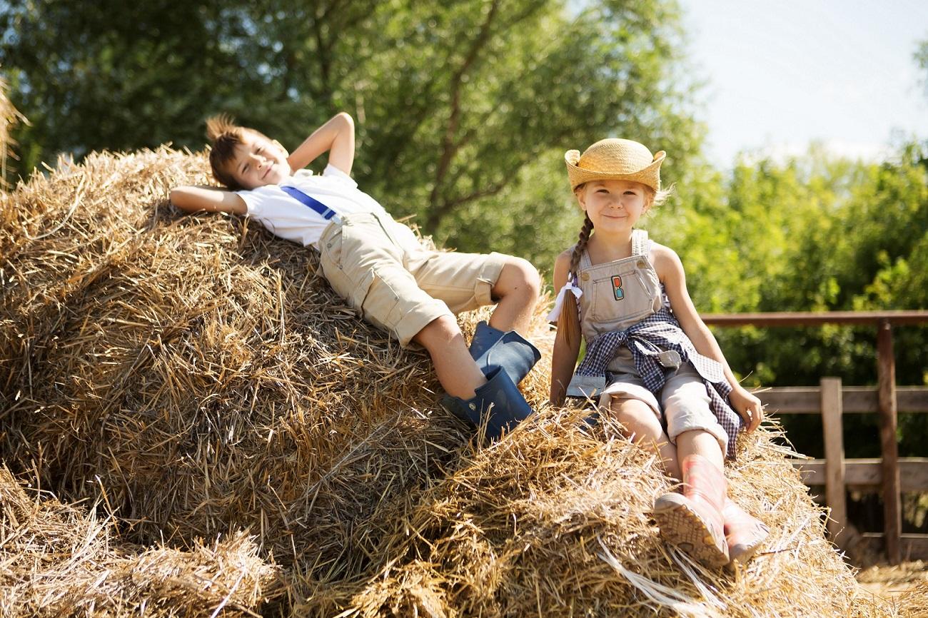 Entdecken Sie, welche positiven Effekte der Bauernhofeffekt haben kann